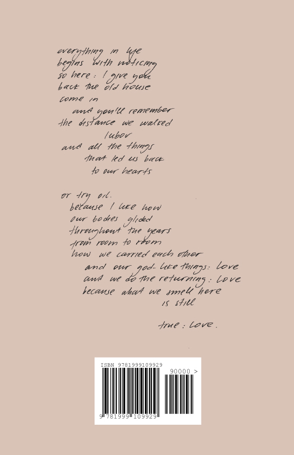 The God-like Things | back cover